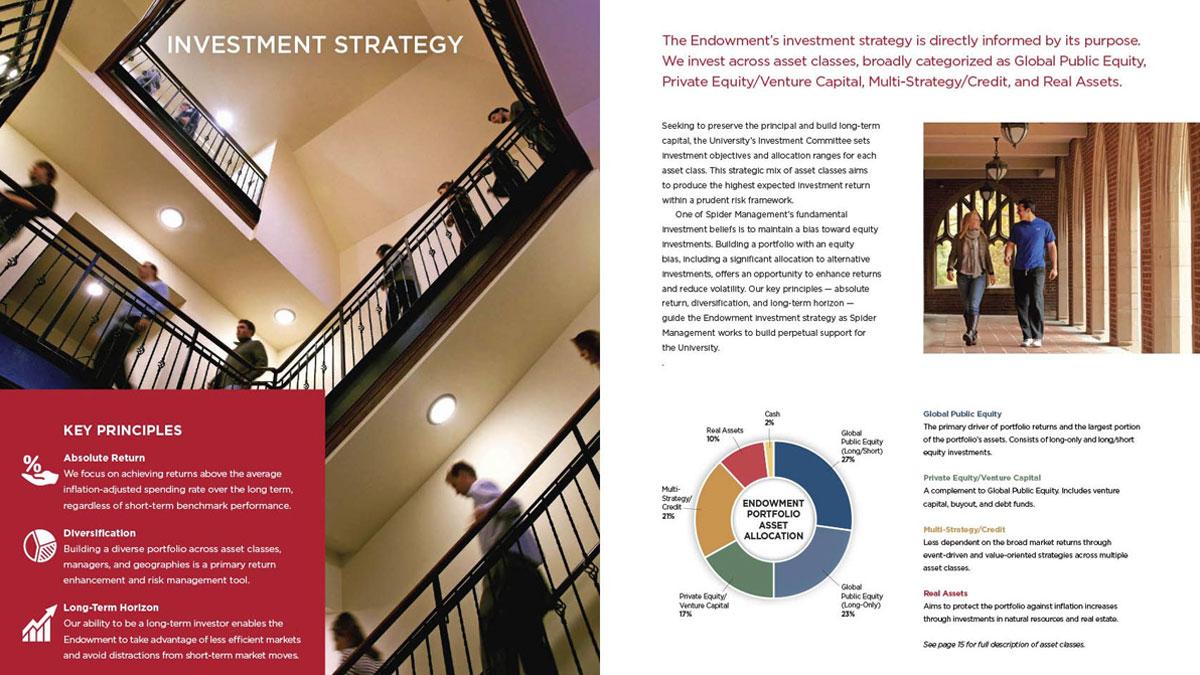 Spider Management Annual Report 2015